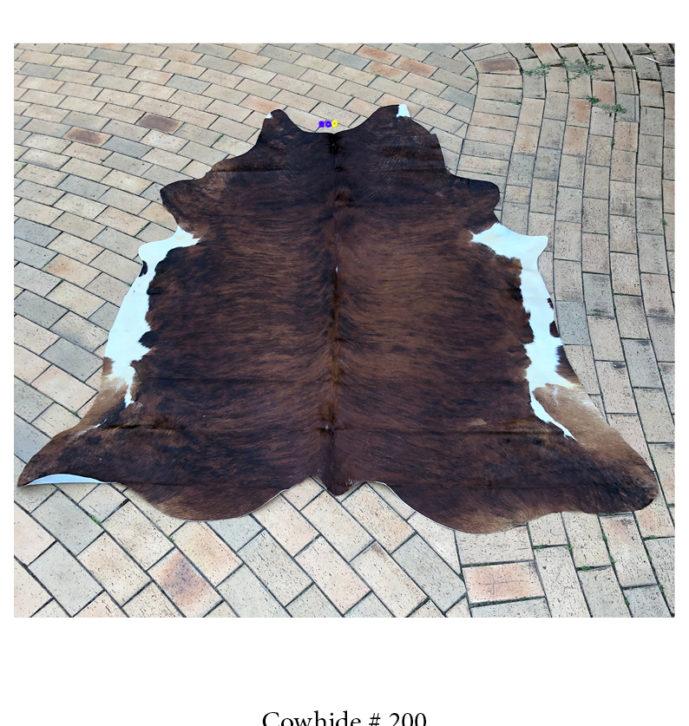Natural Cowhide Rug- No. 200