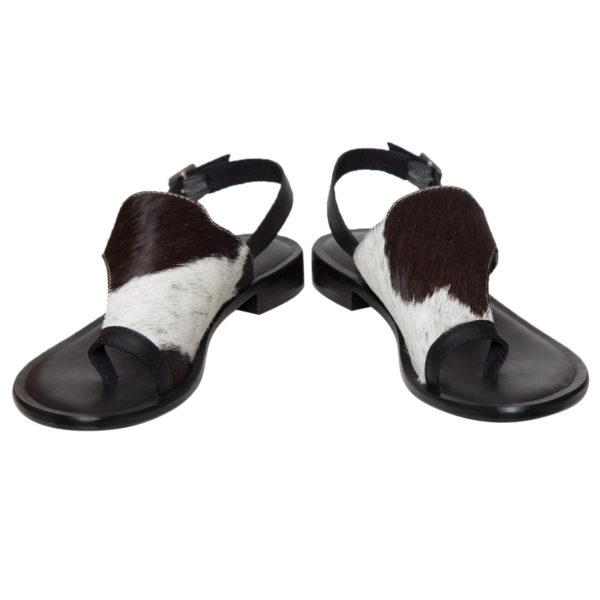 Shoe53b