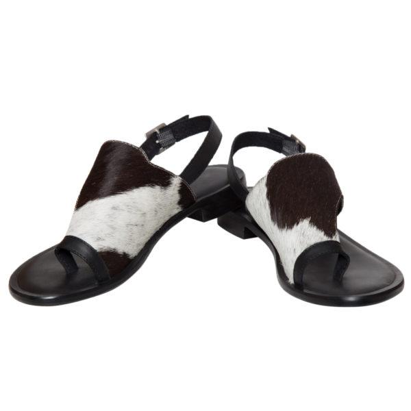 Shoe53b1
